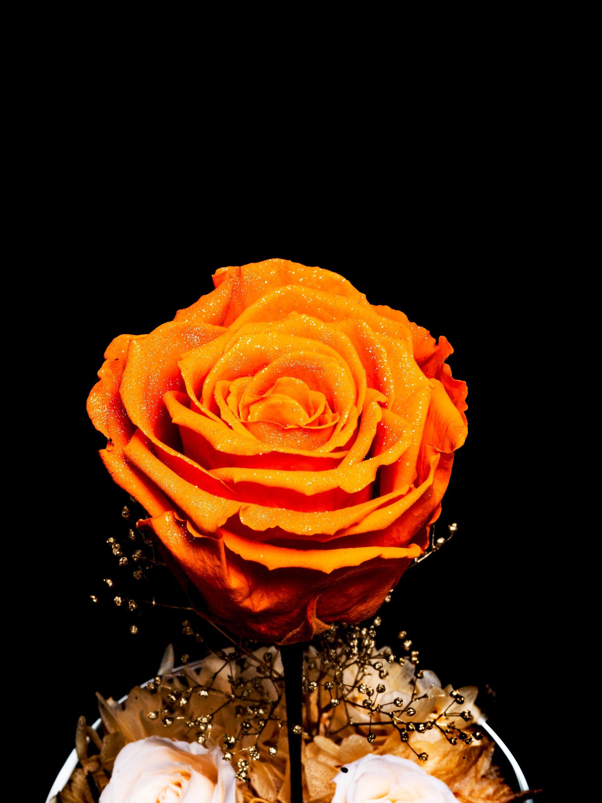 THE LITTLE PRINCE - TANGERINE ORANGE DIAMOND ROSE EDITION