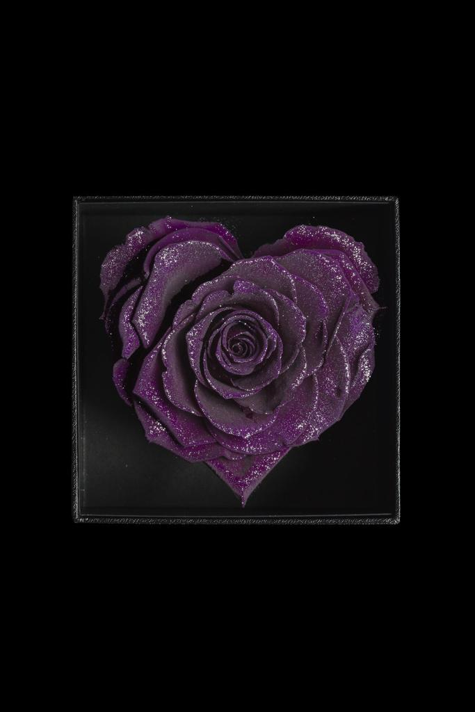 Royce Heart - Dark Purple