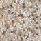 11-MIX-47 - 11/0 Miyuki Seed Bead Mix, White Wedding | 25 Grams
