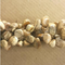 "GM-0653 - Picture Jasper Top Drilled Nugget Gemstone Beads | 16"" Strand"