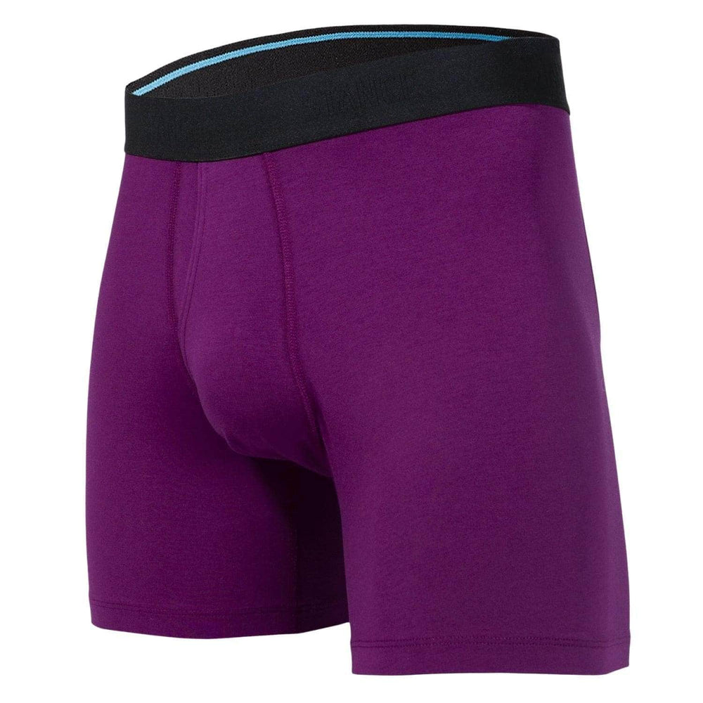 Stance Canyon Boxer Briefs Underwear - Purple