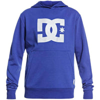 DC Boys Snowstar Kids Pullover Hood - Surf The Web Boys Pullover Hoodie by DC