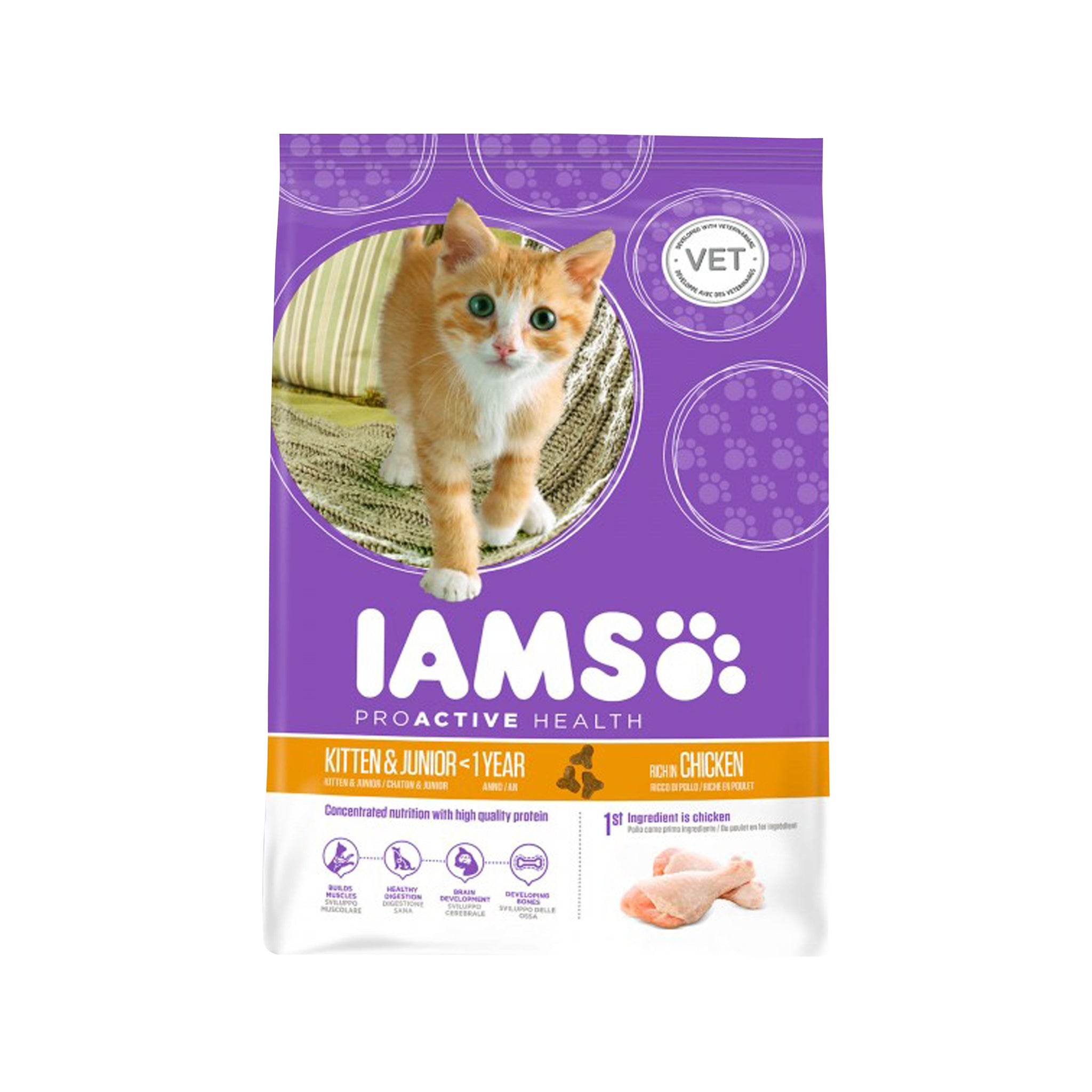 Iams Kitten/Junior 2,55 kg.