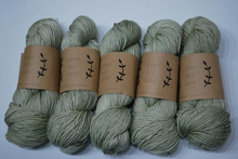Load image into Gallery viewer, Lichen and Lace | Worsted weight | 100% Superwash Merino | 200 yards | 115 grams