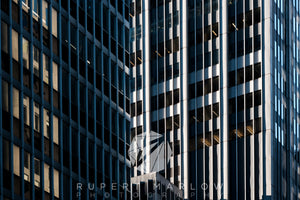 New York Abstract 4