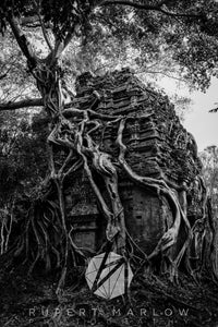 A black and white, monochrome photograph of a temple in Cambodia, wrapped by the roots of a vine tree. Shot in Cambodia by Rupert Marlow fine art documentary photographer in 2018
