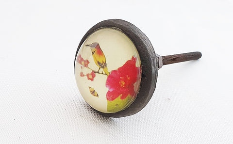 Metal glass vintage style shabby chic yellow bird print 4cm round door knob