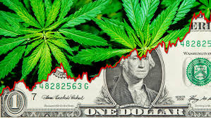 Cost of Unclear Hemp Laws