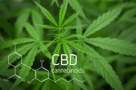 What are cannabinoids, and what  do they do?