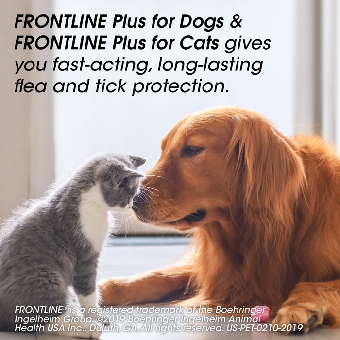 FRONTLINE Plus for Small Dogs (5-22 lbs) Flea and Tick Treatment, 3 Doses