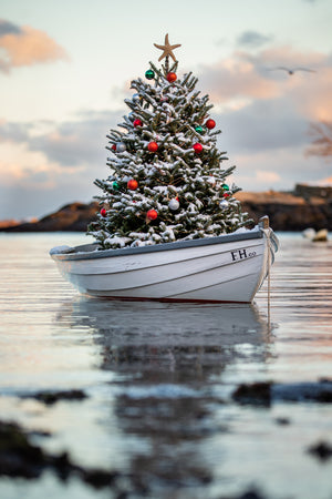 First Harbor Christmas II
