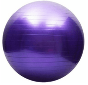 Dream Duffel  - Mad Ally Exercise Ball