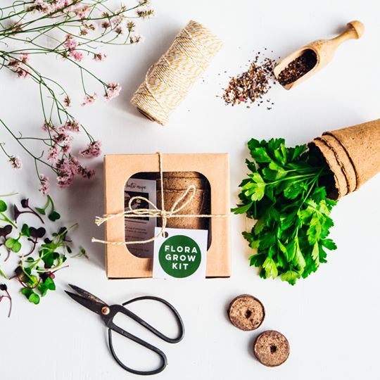 Flora - Kitchen Herb Kit  (chives, thyme and parsley seeds)