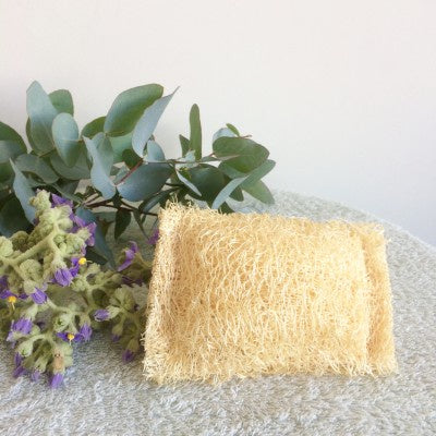 Kitchen and Household Scourer