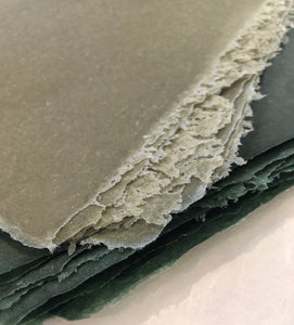 Sage and Evergreen Vellum - Ready to Ship