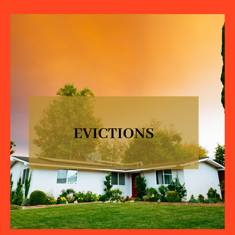 Eviction Consultation