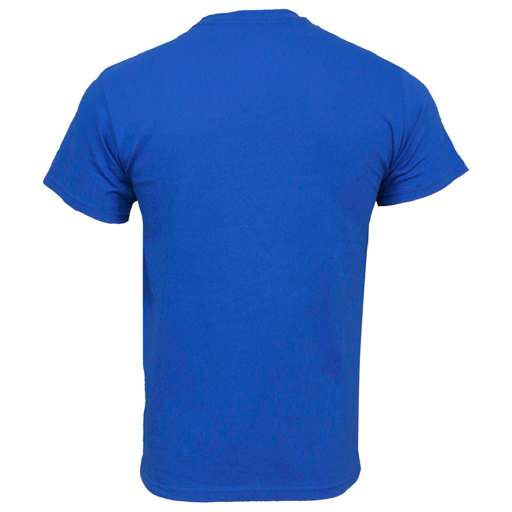 NIKE | MENS SHORT SLEEVE TWO TONE GRAPHIC PRINT LOGO TEE BLUE