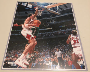 TONI KUKOC Autographed 16x20 Photo #1 Chicago Bulls JSA COA