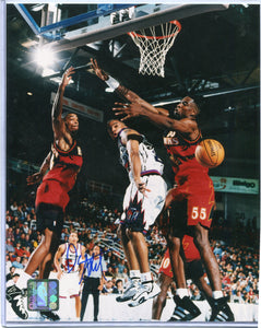 DAMON STOUDAMIRE Autographed 8x10 Photo Toronto Raptors