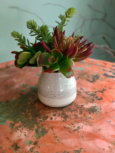 The Terri succulent centerpiece for table~small natural arrangement for shelf~bathroom arrangement~office door, farmhouse decor~mini florals