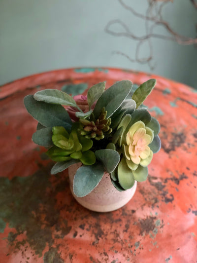 The Kerri succulent centerpiece for table~small natural arrangement for shelf~bathroom arrangement~office door, farmhouse decor~mini florals