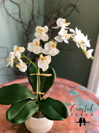 The Gisele Spring White Orchid Centerpiece For Table~All season natural white arrangement~wedding florals~wedding decor~minimalist office