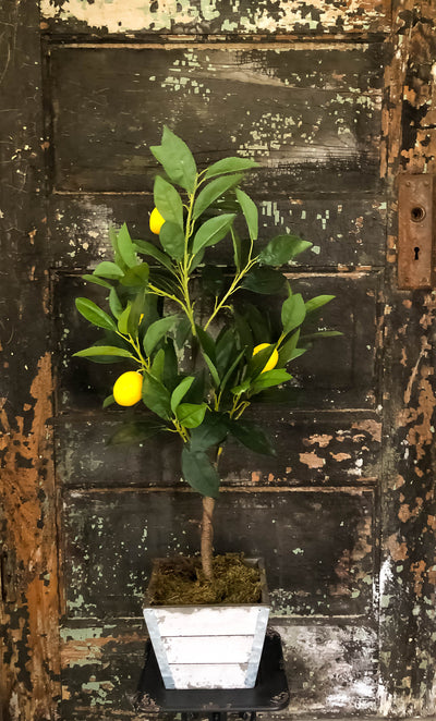 The Laureen Lemon Bush~Tabletop faux lemon tree~Office decor~silk mini Mantle tree~Home decor~farmhouse decor~large silk flower for table