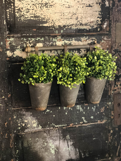 The Kendall Galvanized Metal Hanging Bucket Planter~French Country Cottage Style~Farmhouse decor~Small Maiden Hair Fern wall hanger