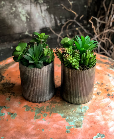 The Inez Spring Succulent Centerpiece For Table Set Of 2~All season green succulent arrangement~bathroom decor~office decor~farmhouse