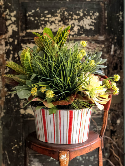 The Frieda XL Spring Mixed Greenery Centerpiece For Table~All season natural green succulent arrangement~rustic Summer decor~year round