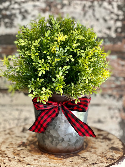 Tea Leaf Topiary Pot, Round Tin Christmas Planter, Christmas greenery, Farmhouse christmas planter, farmhouse greenery