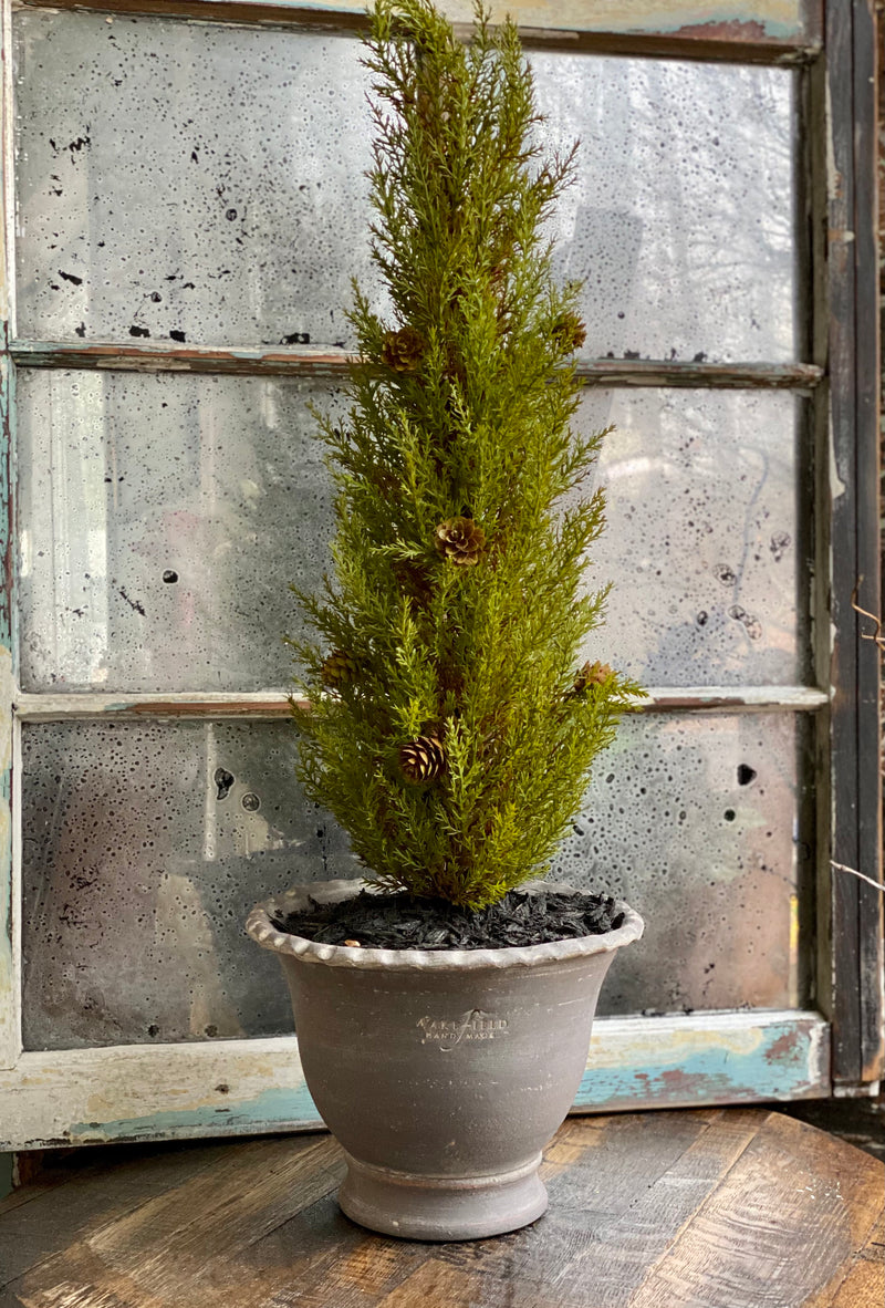 The Hawthorne Artificial Real Touch Potted Cypress Tree, Tabletop tree, home office decor, Tree for mantle, farmhouse decor, gift for her