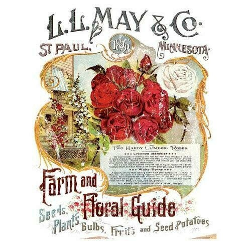 IOD LL May Floral Rose Decor Rub On Transfer Sheet, Transfers for crafts, craft supply, Decal for furniture, Farmhouse transfer designs
