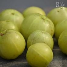 Amla immunity shield for adults with high potency