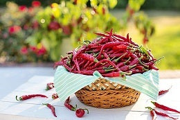 Foods that can boost your libido red chili