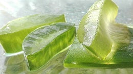 Tips for glowing skin put aloe vera get everyday
