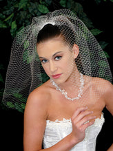 "Load image into Gallery viewer, 18"" Birdcage veil"