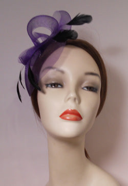 Horsehair Fascinator with Coque Feathers