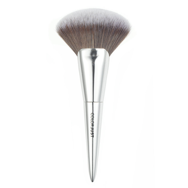 Colorjust Must Have Brush Collection in Polished Silver Metal