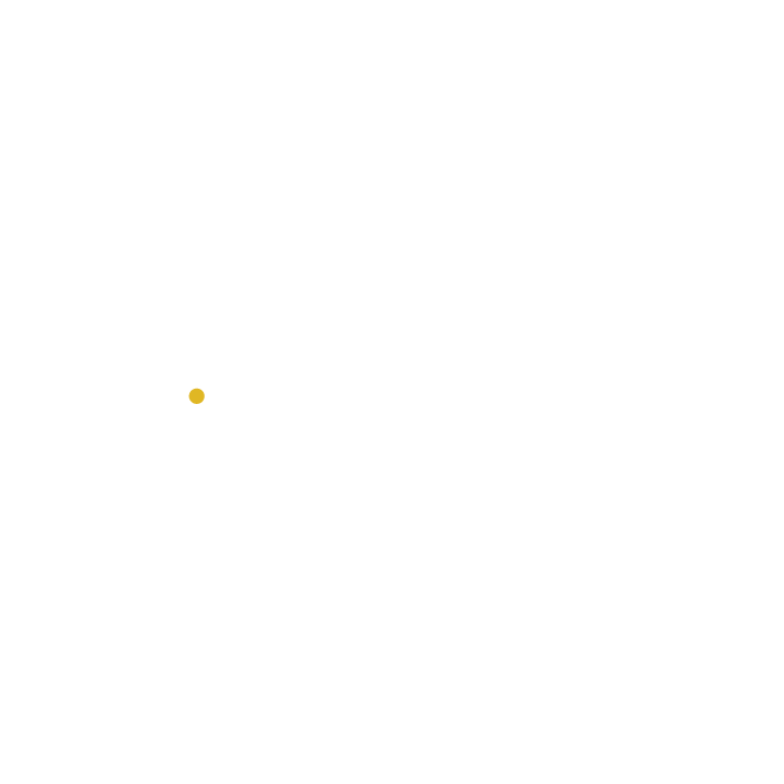 The Afropolitan Shop