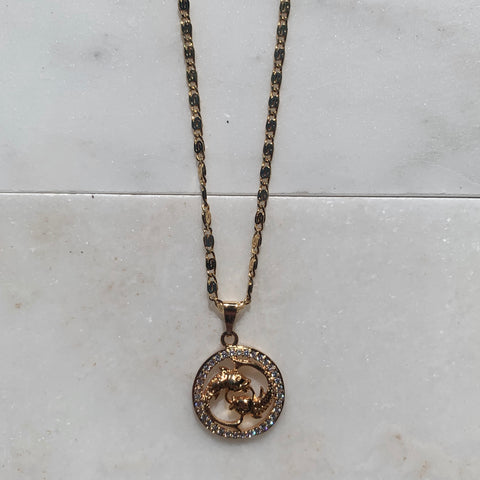 Zodiac Pisces Gold Necklace-Au+ORA