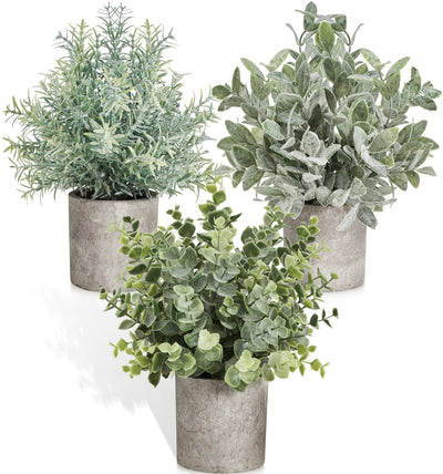 Mini Artificial Plants Faux Plant Set – Home Decor Indoor Desk Plant – Artificial Rosemary, Artificial Boxwood, Faux Eucalyptus Decor
