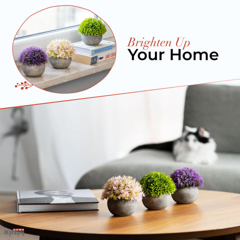Small Artificial Plants for Home décor and office, Set of 3 – Multi colored Realistic Mini Fake Plants – Pet- and Kid-Safe PE Plastic Decor Plants with Faux Concrete Pots by KITZINI HOME,  5.5x4.7 In.