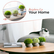 Small Artificial Plants for Home décor and office, Set of 3 – Green and White Realistic Mini Fake Plants – Pet- and Kid-Safe PE Plastic Decor Plants with Faux Concrete Pots by KITZINI HOME,  5.5x4.7 In.