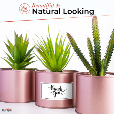 3 Artificial Succulent Plants in Rose Gold Pots