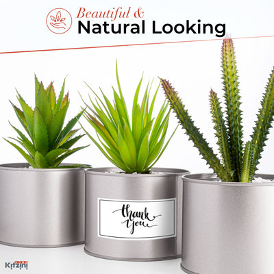 3 Artificial Succulent Plants in Silver Pots