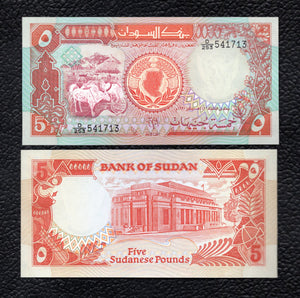 Sudan P-45  1991(AH1411)  5 Pounds - Crisp Uncirculated
