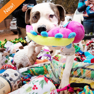 Dog Enrichment Toys
