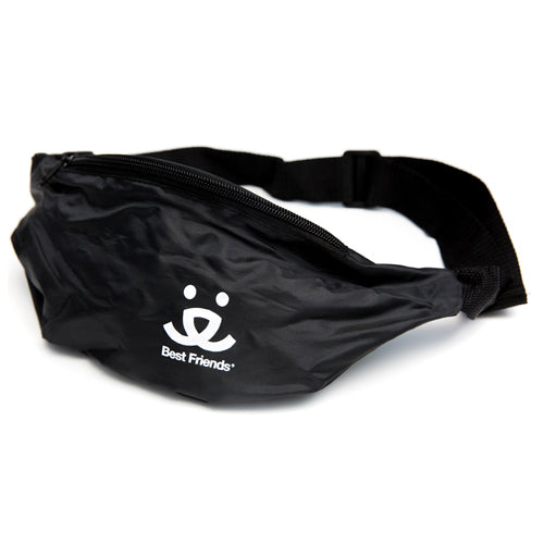 Strut Hip Pack
