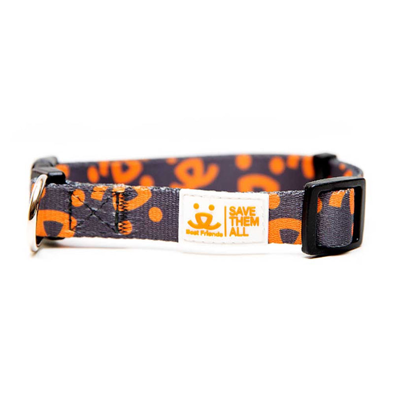 BF Dog Collar - Gray w/Orange Logo